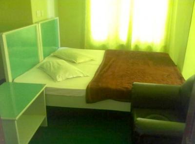 Mount Hotel Inn Image