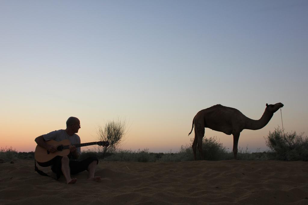 2 Days 1 Night Camel Safari Image