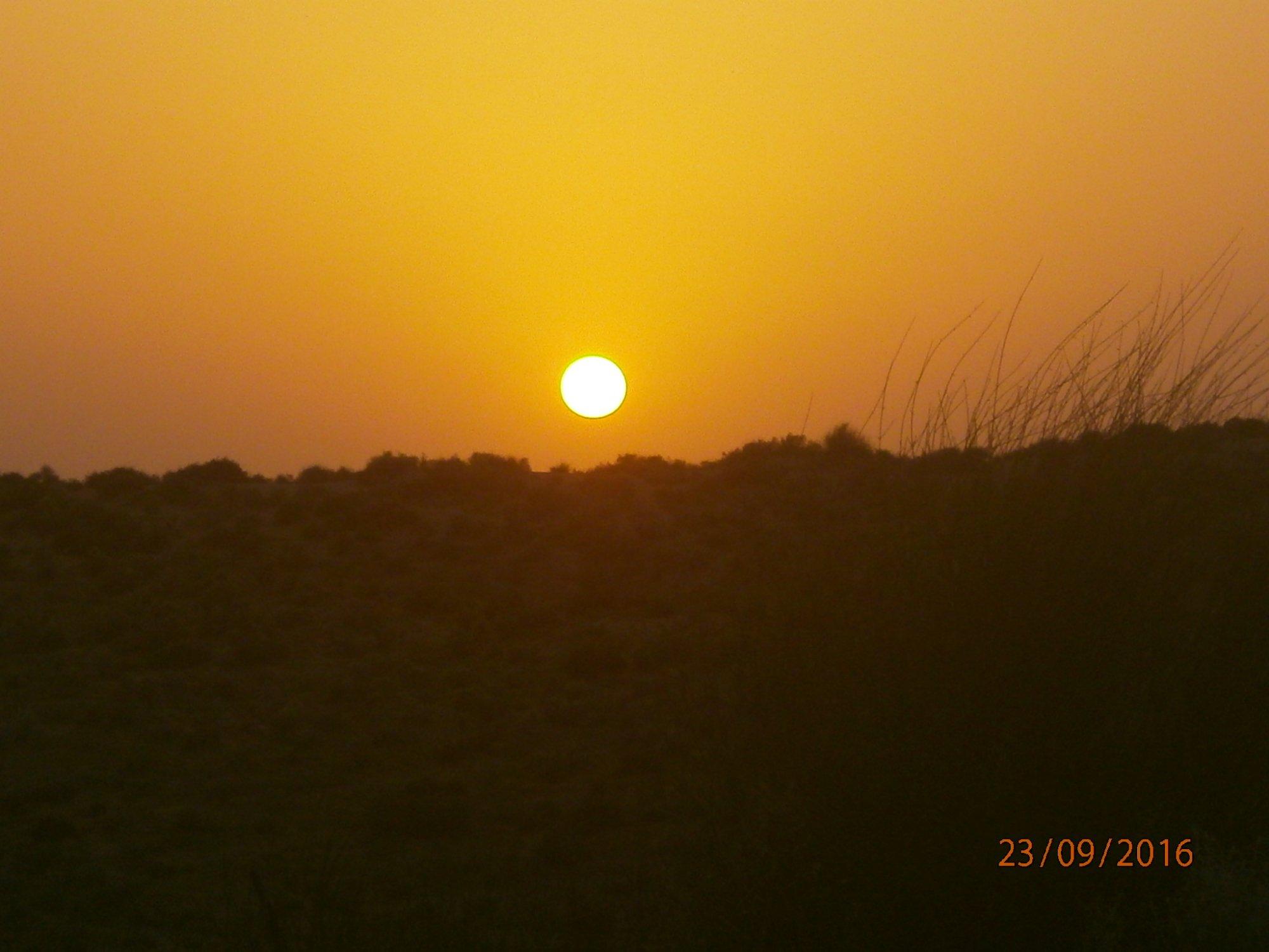 Overnight Safari Image