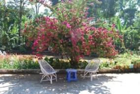 Hari Ma Retreat Image