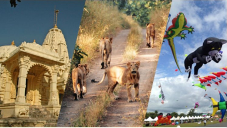 Gujarat Tours - Statue Of Unity Image