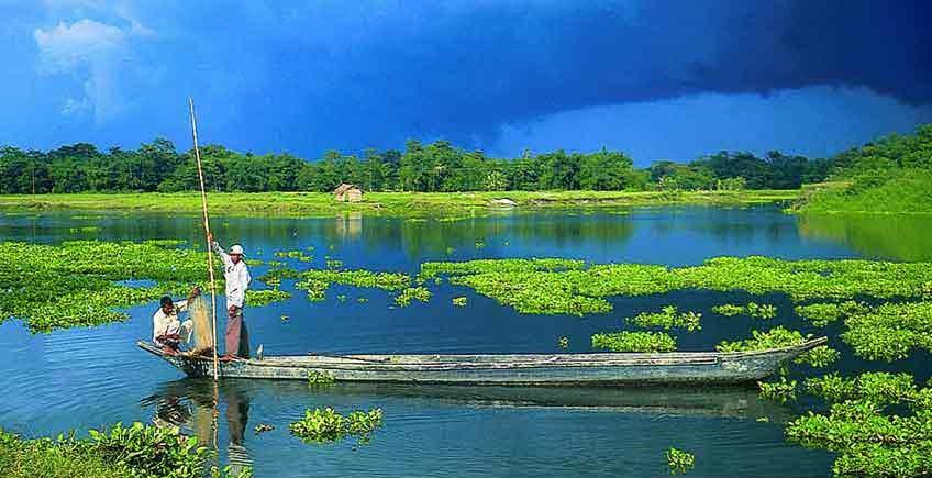 KAZIRANGA WILDLIFE PHOTOGRAPHY & BIRD WATCHING TOUR Image