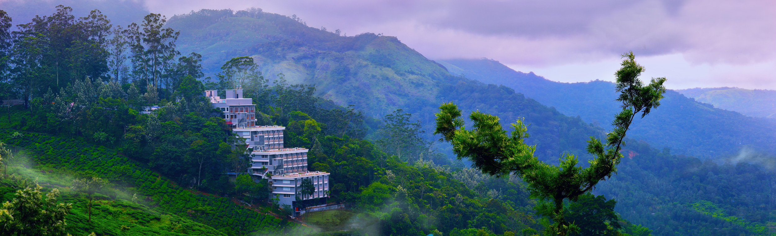 CHANDY WINDY WOODS MUNNAR  Image