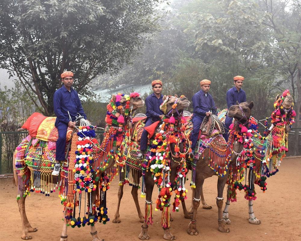 Pratapgarh Farms Image